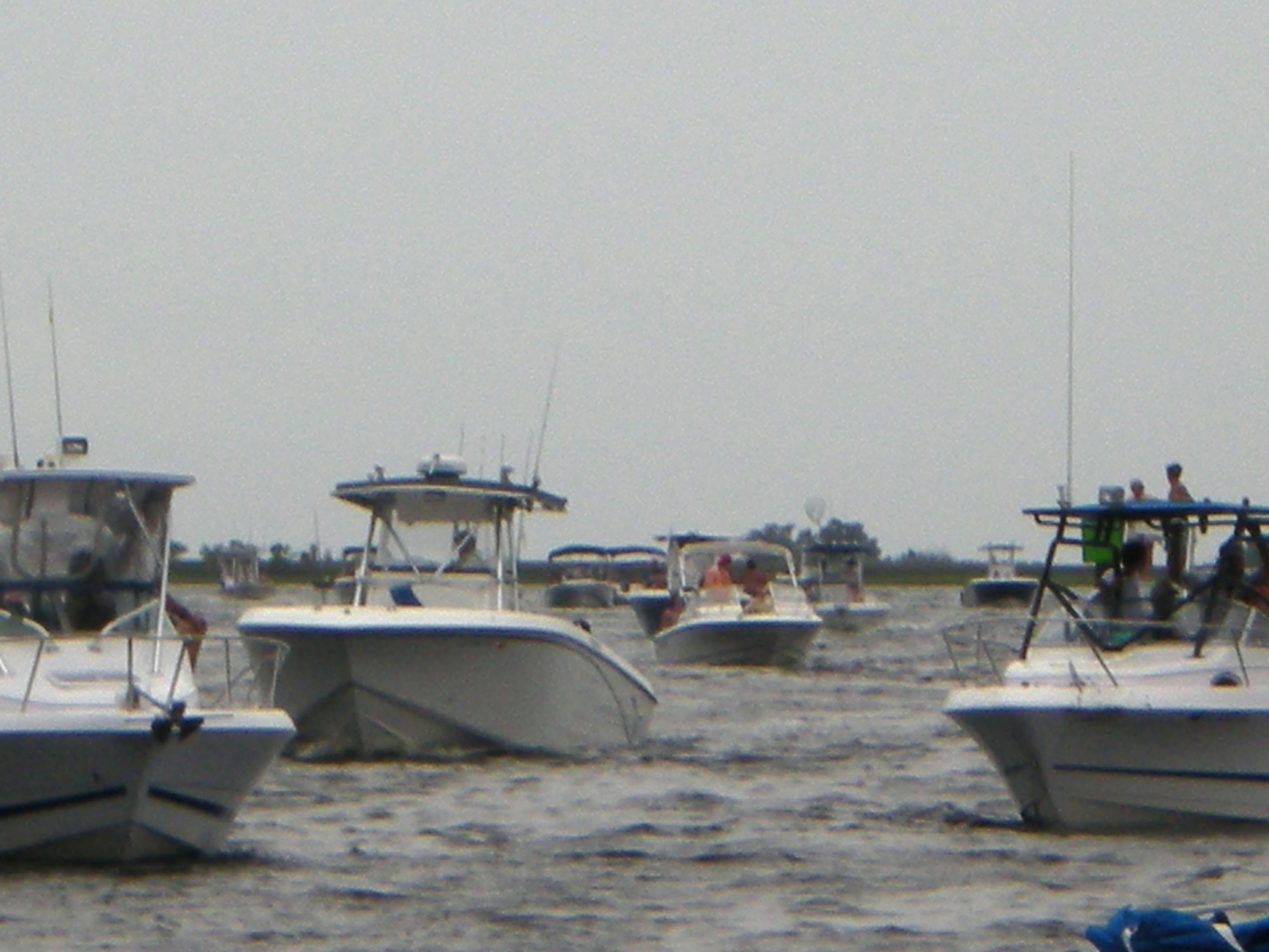 Scallop report for steinhatchee bite me fishing for Steinhatchee fl fishing