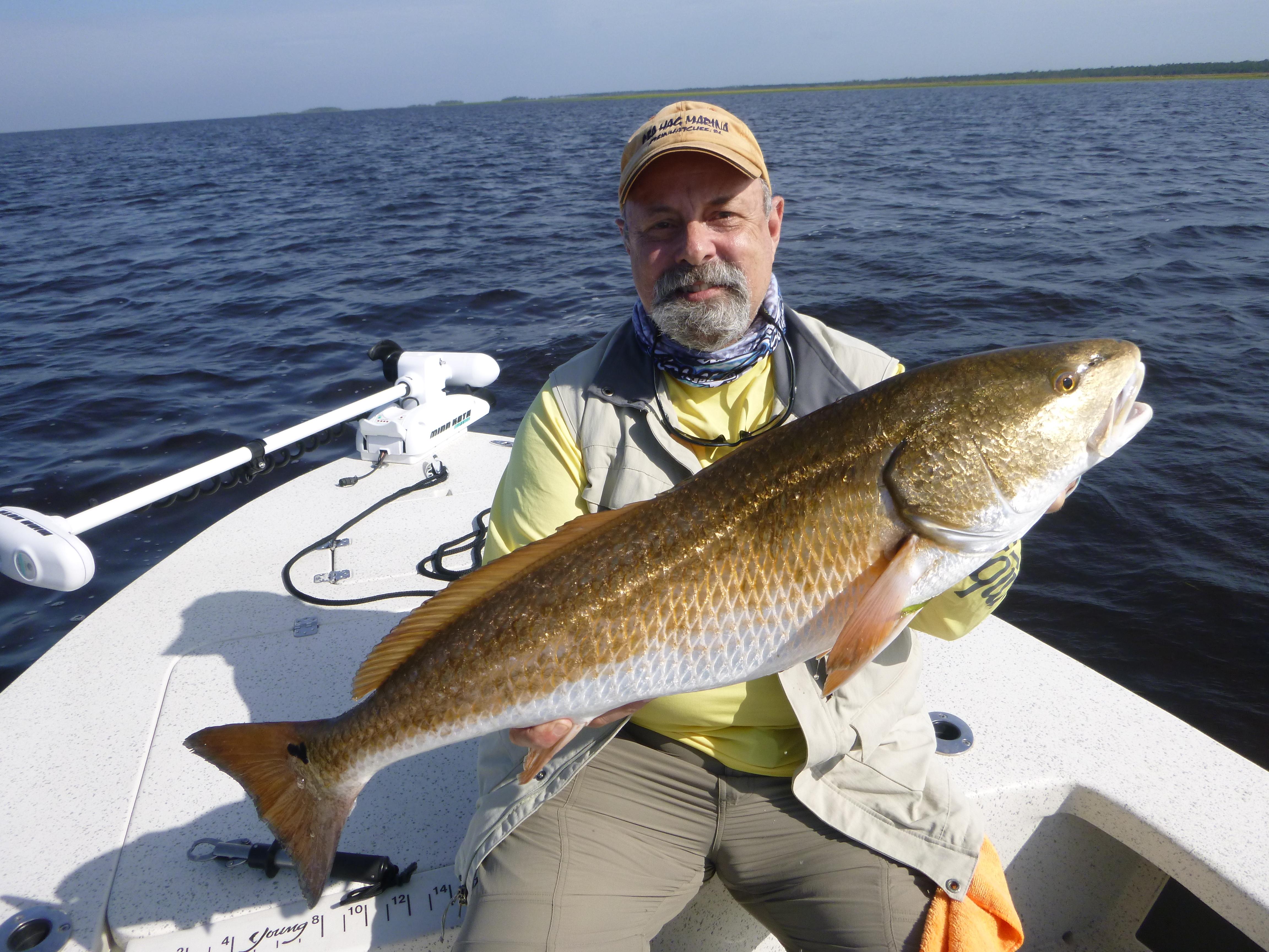 trout | Bite Me Fishing